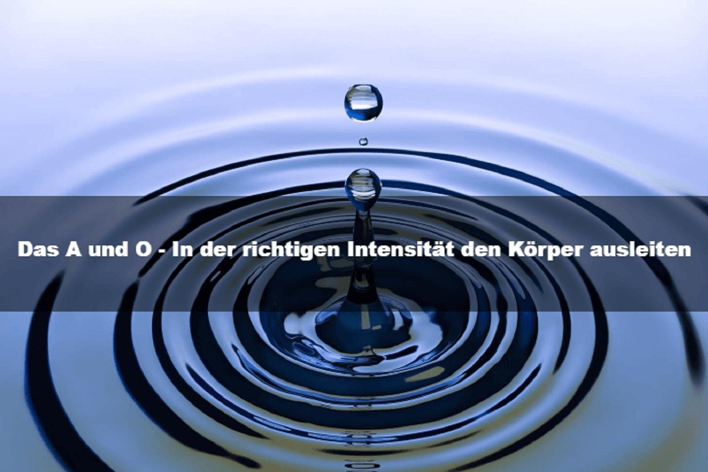 https://www.meinnaturheilpraktiker.ch/wp-content/uploads/2020/02/B-9.png
